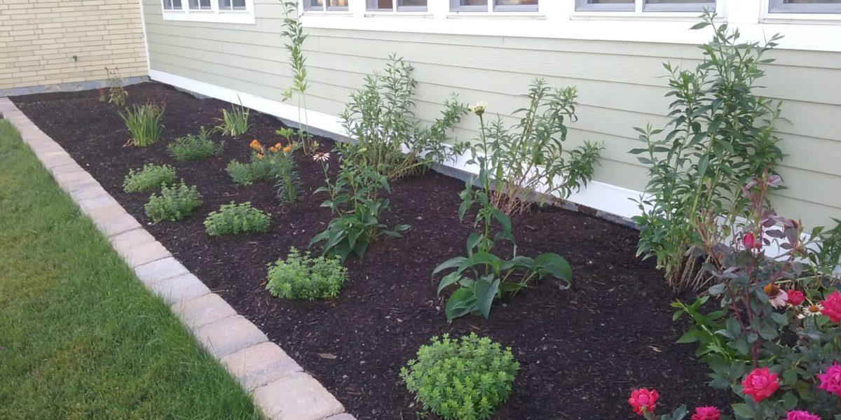 A New Flower Garden